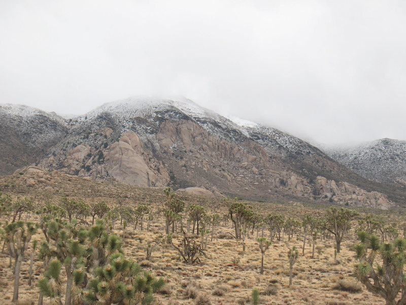Rock Climbing Photo: Ryan Mountain with a dusting of snow, Joshua Tree ...