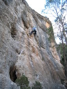 Rock Climbing Photo: The first half of Mayling is mostly juggy & fun.