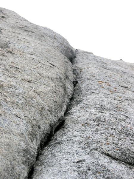 Rock Climbing Photo: bloodline
