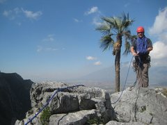Rock Climbing Photo: Obligatory palm tree shot at summit o Estrellita.