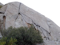 Rock Climbing Photo: Pitch 1 of Mutt goes up to the striking hand crack...