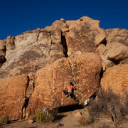Rock Climbing Photo: Some random problem in J-Tree. Felt like V2? 3?