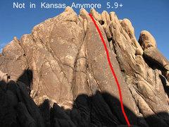 Rock Climbing Photo: Not in Kansas Anymore