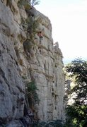 Rock Climbing Photo: The shared finish of Uncensored Society and Condor...
