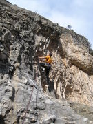 Rock Climbing Photo: The first half of Venin features some nice tufas.