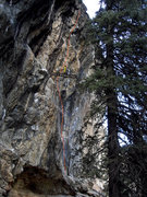 "Rock Climbing Photo: When completed; the proj. (""Problem Child&quo..."