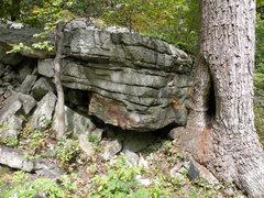 Rock Climbing Photo: Little Too (V0-)