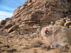 Rock Climbing Photo: Having fun in the sun on Rita (V-easy), Joshua Tre...