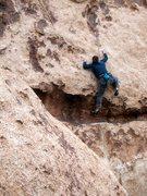 Rock Climbing Photo: Christina mid-crux on Shattered (5.10c), Joshua Tr...