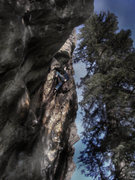 Rock Climbing Photo: Luke Childers working his latest Clear Creak Canyo...