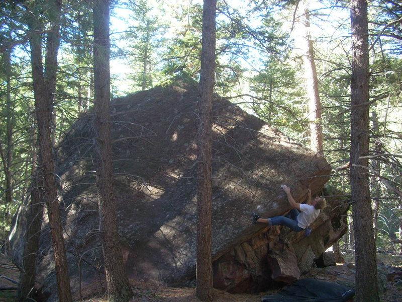 Sei, Whale Boulder, Eldo.