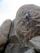 Rock Climbing Photo: Passing the 3rd bolt of The Shank (5.10a), Joshua ...