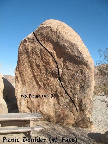 Rock Climbing Photo: Photo/topo for Picnic Boulder (W. Face), Joshua Tr...