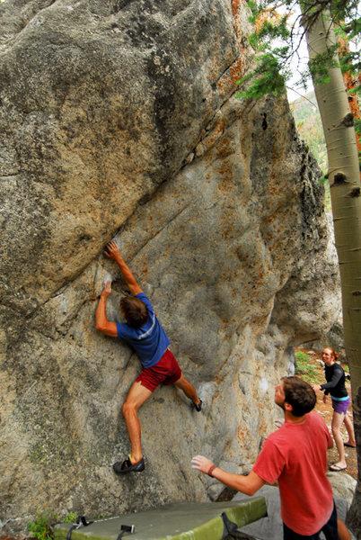 Rambo on Treetop Flyer. 8/23/09.