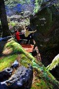 Rock Climbing Photo: Mole