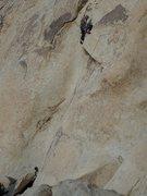 Rock Climbing Photo: Chris clipping the 3rd bolt (c) Scott Nomi.