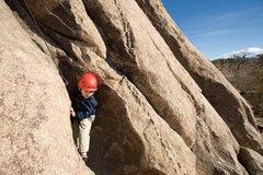 Rock Climbing Photo: Three-year-old Bryson Fienup climbs on Trashcan Ro...