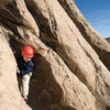 Three-year-old Bryson Fienup climbs on Trashcan Rock, in Joshua Tree National Park.