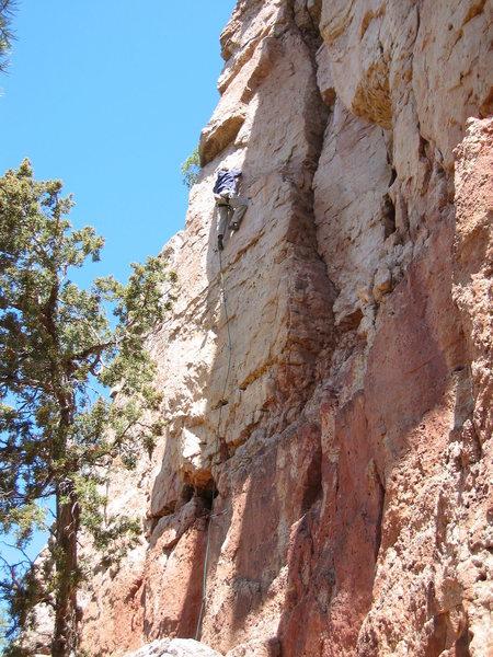 Rock Climbing Photo: The Chad cranking some 12 at Shelf.