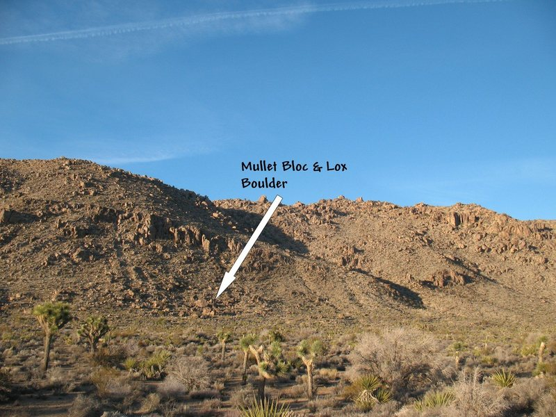Overview of the western Separate Boulders, Joshua Tree NP