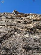 Rock Climbing Photo: jeremy on lead