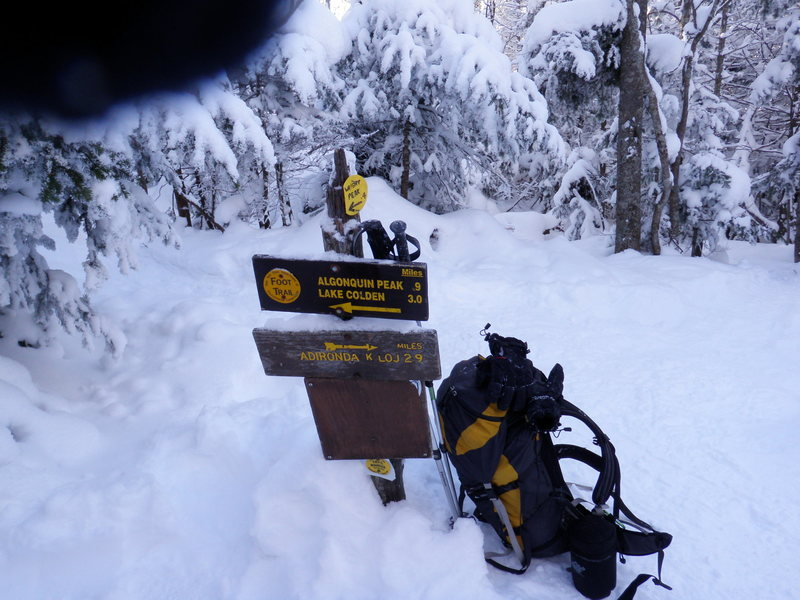 Rock Climbing Photo: trail marker and pack at Algonquin and Wright trai...
