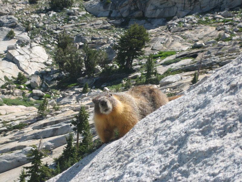 Rock Climbing Photo: Company at start of climb