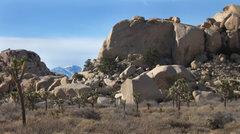 Rock Climbing Photo: Indian Wave Boulders. San Gorgonio and Hunk Rock. ...