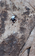 "Rock Climbing Photo: Todd Gordon on the first lead of ""Leaving Las..."
