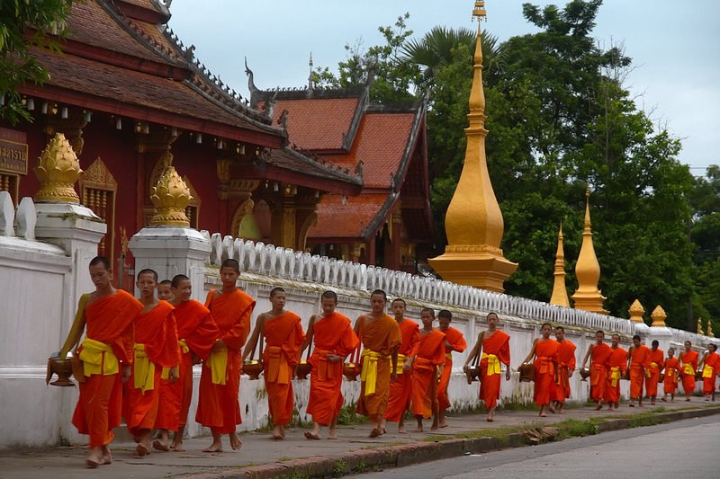 The monks of Luang Prabang lining up for their pre-dawn march through town to collect their morning alms.