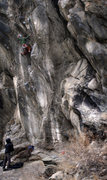 Rock Climbing Photo: With Jay van Sam on the rope controls Max works hi...