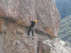 "Rock Climbing Photo: Considering the moves at the roof of ""Intelli..."