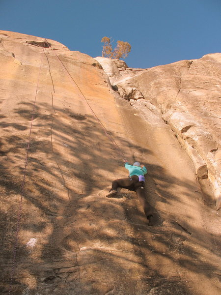 Rock Climbing Photo: Middle of Gold Wall.