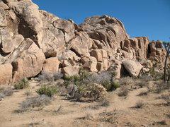 Rock Climbing Photo: Blas Beemer Area, Joshua Tree NP