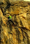 Rock Climbing Photo: Jables G'Owen Rogue on the FA.