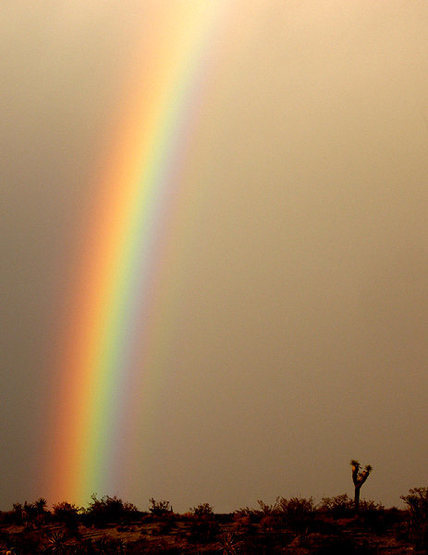 Rock Climbing Photo: Sometime it rains leaving nice rainbows. Photo by ...