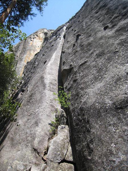 Rock Climbing Photo: Chicken Pie
