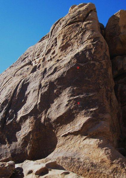 Rock Climbing Photo: Bobcat