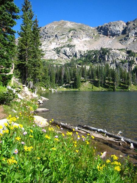 Rock Climbing Photo: Jasper Lake.