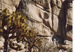 Rock Climbing Photo: Another one...