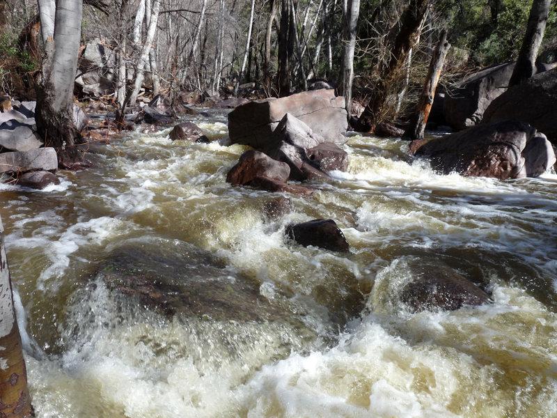 Rock Climbing Photo: Lower Devil's Creek post record rainfall in AZ.