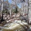 Lower Devil's Creek post record rainfall in AZ.