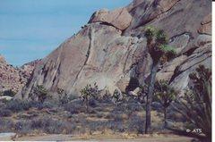 Rock Climbing Photo: Climbing Black Tide