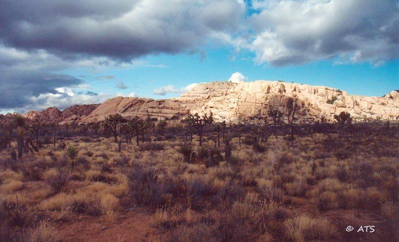 Rock Climbing Photo: Sunlit rock
