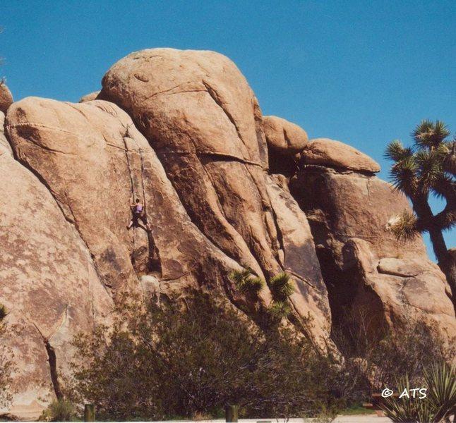 Rock Climbing Photo: Climber on Cranny
