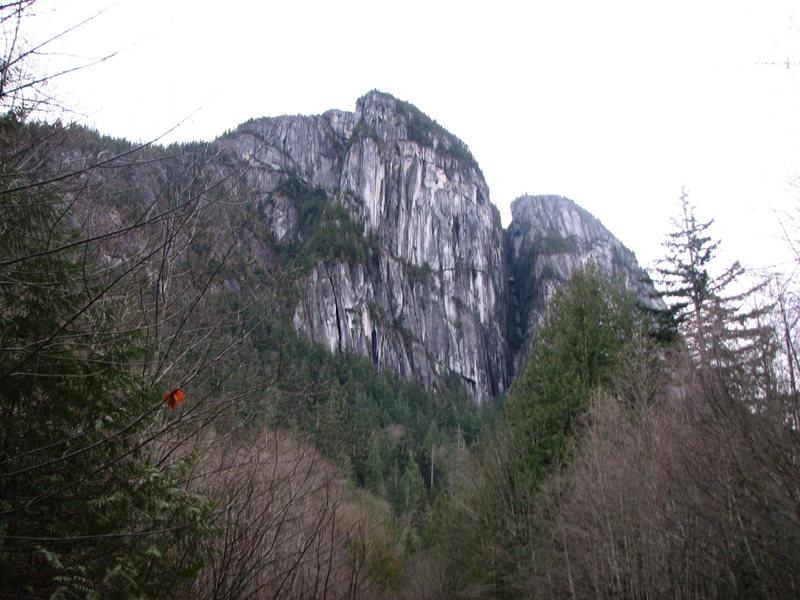 Rock Climbing Photo: The Chief