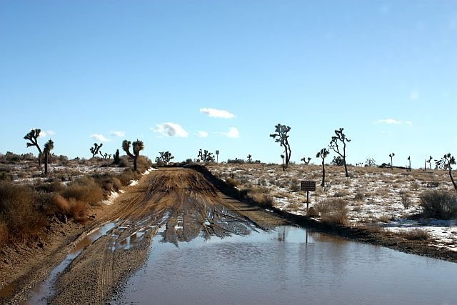 Geology Tour Road after a storm, Joshua Tree NP<br>