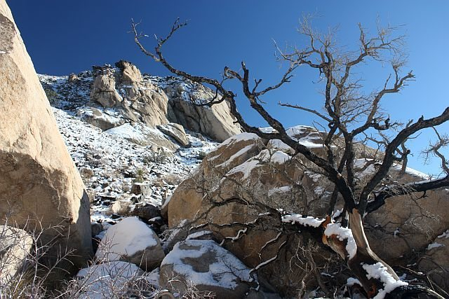Snow on the Cowboy Crags, Joshua Tree NP