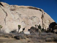 Rock Climbing Photo: Fun in the sun on a January day, Joshua Tree NP