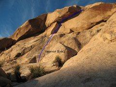 Rock Climbing Photo: Uppercut (5.10c), Joshua Tree NP